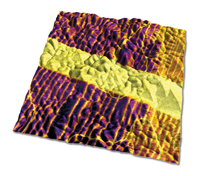 Image shows vertical PFM amplitude overlaid on AFM topography for a lead titanate film, 5µm scan. Imaged with the MFP-3D AFM. Images courtesy of A. Gruverman and D. Wu, UNL. Sample courtesy H. Funakubo.