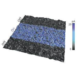 Photoconductive sample imaged on the Infinity AFM. The sample was illuminated in the middle of the scan, resulting in an increased photocurrent response