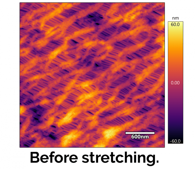 Celgard membrane before stretching afm image